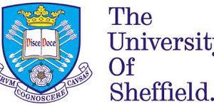 University of Sheffield Africa Scholarship
