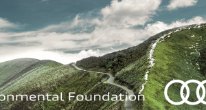Audi Environmental Foundation Scholarship
