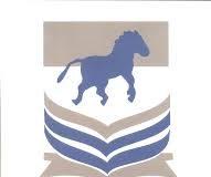 FCE-Ehaamufu Post UTME Screening Form 2019/2020 [NCE Courses]